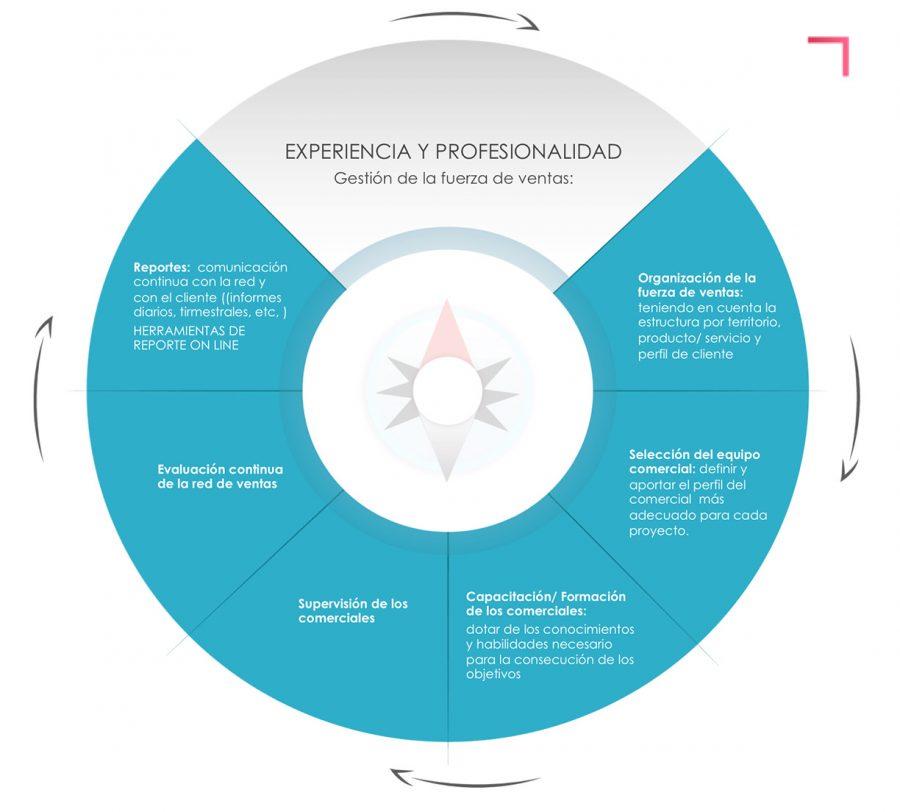 Grafico-metodologia